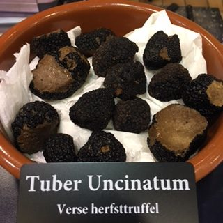 verse truffels